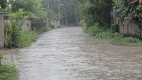 Strzelający ulewny deszcz na lokalnej drodze zbiory