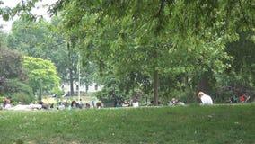 Sts James ParkImage med folk som kopplar av sammanträde på det gröna gräset stock video