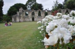 Sts Mary abbotskloster, York, Förenade kungariket Arkivfoto