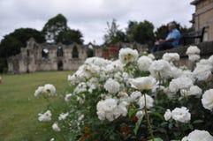 Sts Mary abbotskloster, York, Förenade kungariket Royaltyfri Foto