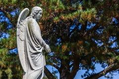 Sts Mary kyrkogård Arkivfoton