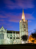 Sts Patrick domkyrka, Dublin Royaltyfri Fotografi