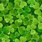 Sts Patrick sömlös bakgrund för dag med treklövern. Royaltyfri Fotografi