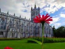Sts Paul domkyrkakyrka, Kolkata västra Bengal, en härlig röd blomma arkivfoton