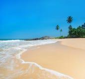 Sätta på land med vågor mot vaggar och palmträd i solig dag Arkivfoton