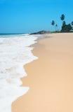 Sätta på land med vågor mot vaggar och palmträd i solig dag Arkivfoto