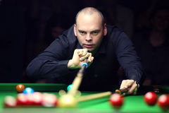 Stuart Bingham Royalty Free Stock Photography