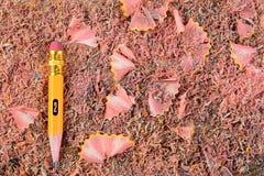 Stub карандаша на Shavings Стоковые Изображения RF