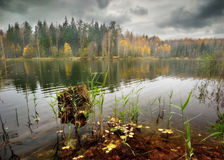 Stub of autumn lake Royalty Free Stock Photos