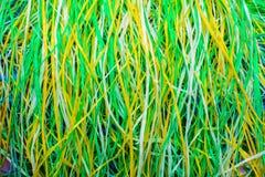 Stubarwna supłająca koronka nić kolor tła abstrakcyjne Zdjęcia Royalty Free