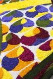 Stubarwny kwiecisty dywan zdjęcia royalty free