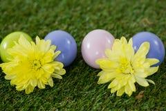 Stubarwny Wielkanocny jajko na trawie Obraz Royalty Free