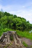 Stubbe nära vattnet Royaltyfri Fotografi