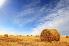 Free Stubble Field And Hay Bales Stock Image - 33575381
