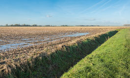 Stubble field in autumn Stock Photography