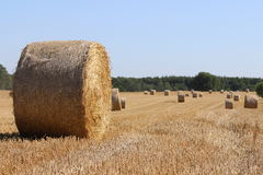 Stubble field with bale of straw Stock Images