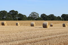 Stubble field with bale of straw Royalty Free Stock Photos