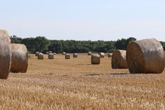 Stubble field with bale of straw Stock Photo