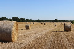Stubble field with bale of straw Stock Image