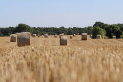 Stubble field with bale of straw Royalty Free Stock Photography