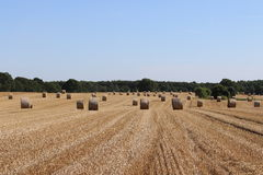 Stubble field with bale of straw Royalty Free Stock Image