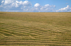 Stubble field and  clouds. Royalty Free Stock Photos