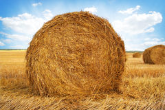 Stubble field and hay bales Stock Images