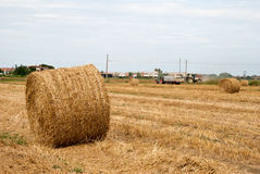 Stubble field and hay bales Royalty Free Stock Images