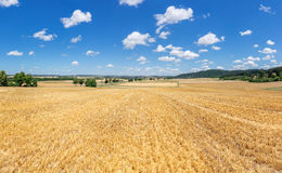 Stubble field in rural landscape Stock Images