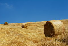 Stubble field and straw bales. Golden stubble field with bales of straw and cloudless blue sky royalty free stock image