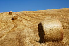 Stubble field and straw bales. After the harvest has been gathered in, with cloudless blue sky royalty free stock images