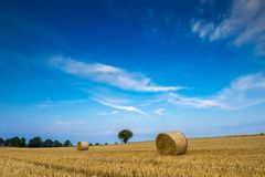 Stubble field with straw bales Stock Photography