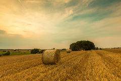 Stubble field with straw bales Stock Photos