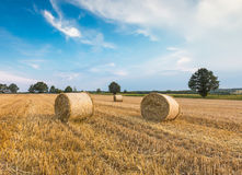 Stubble field with straw bales Royalty Free Stock Image