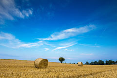 Stubble field with straw bales Royalty Free Stock Photography