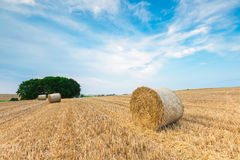 Stubble field with straw bales Royalty Free Stock Images