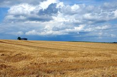 Summer landscape. Stubble field with wooden barn at horizon and cloudy sky Stock Photography