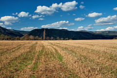 Stubble fields early spring with forested mountains in background Royalty Free Stock Image
