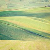 Stubble Fields Royalty Free Stock Images
