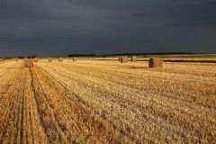 Stubble with straw bales Royalty Free Stock Photo