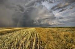 Stubblefält och Prarie storm arkivbild