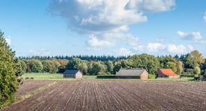Stubblefield in the autumn season. Stubble field and meadows with horses next to a farm with barns in the Netherlands Stock Photo
