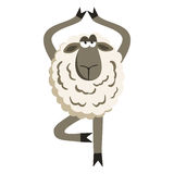 Stubborn Lamb in Yoga Tree Pose Vector. Stubborn Lamb in Yoga Tree Pose. Sheep character. Vector illustration of stubborn sheep doing yoga tree-pose isolated on Stock Image