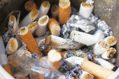 Stubs. Scores of cigarette stubs in ashtray royalty free stock photos