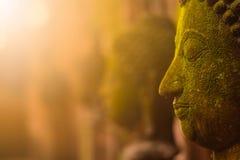 Stucco la dea di Buddha del fronte sacra con muschio verde Immagini Stock