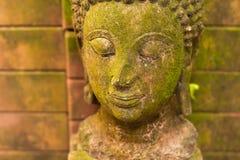 Stucco la dea di Buddha del fronte sacra con muschio verde Immagine Stock