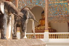 Stucco sculpture elephant and Buddha statue Chiang Royalty Free Stock Photography