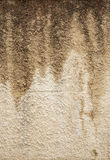Stucco texture Stock Image