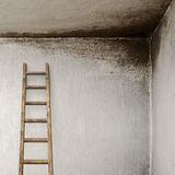 Stucco wall with wooden ladder Stock Images
