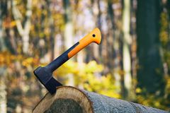 Free Stuck Axe In A Log In Forest Stock Images - 105125944